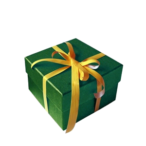 pacco-regalo2